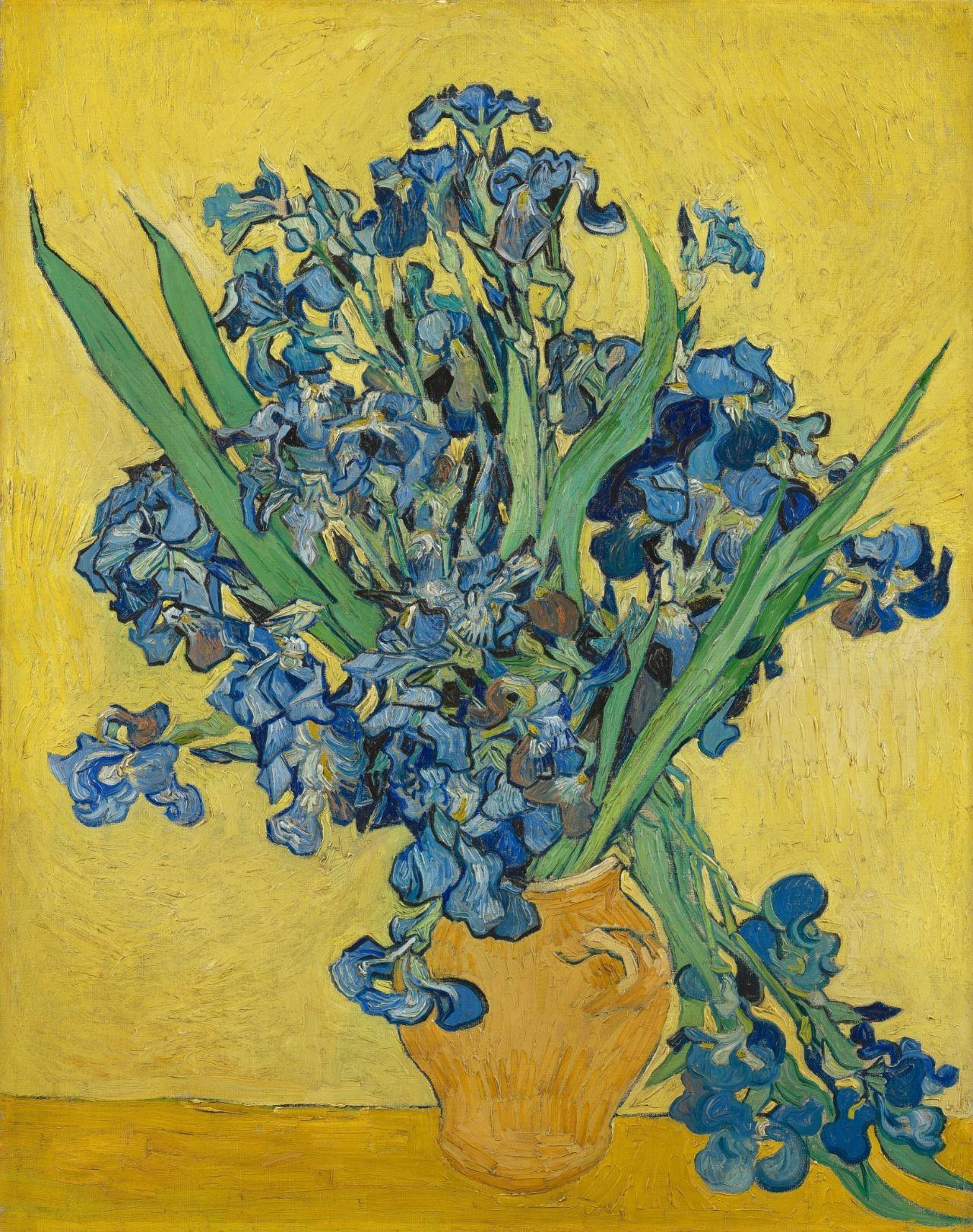 Irises - Vincent van Gogh - Van Gogh Museum