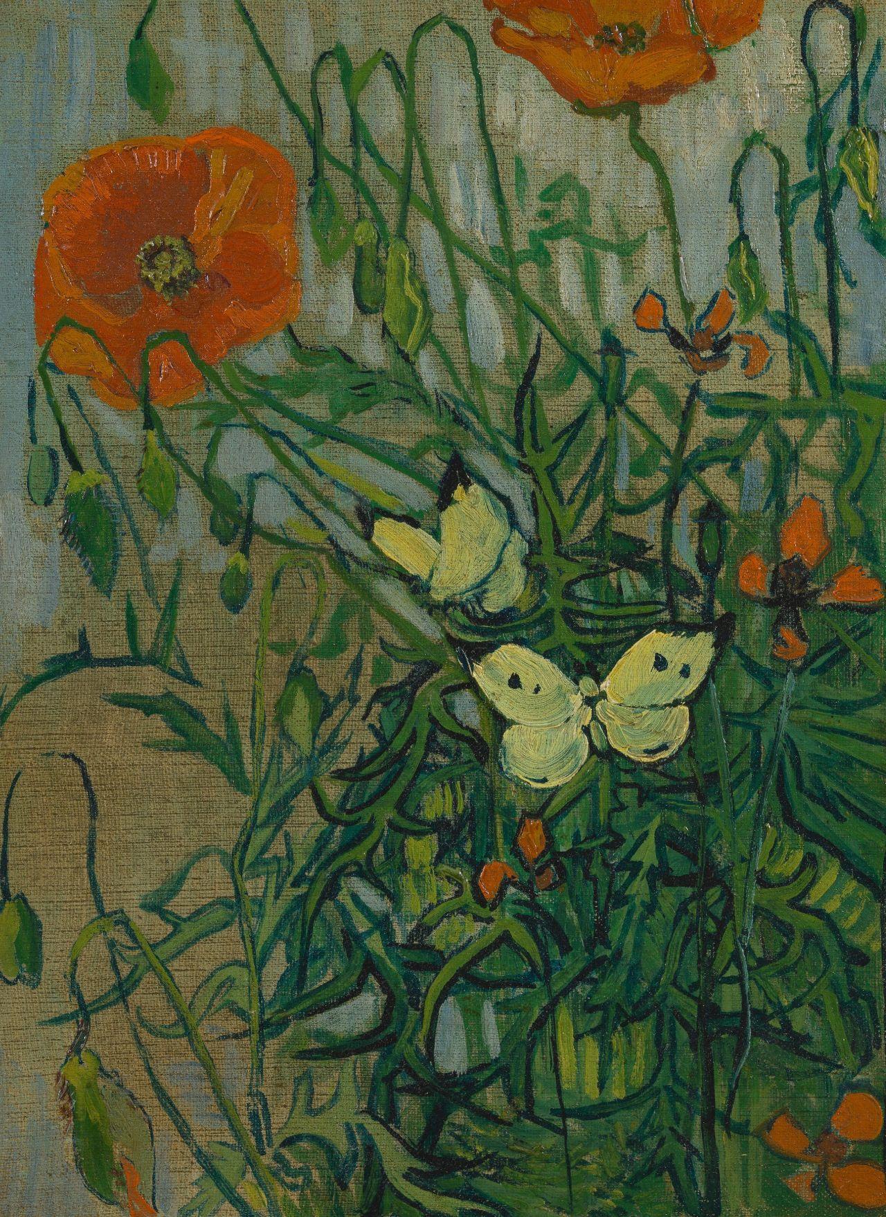 Vincent Van Gogh Butterflies And Poppies Van Gogh Museum