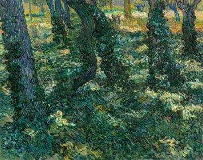 Vincent van Gogh, Undergrowth, 1889